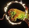 Цирки в Иркутске